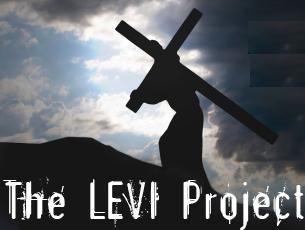 + Levi Project Art
