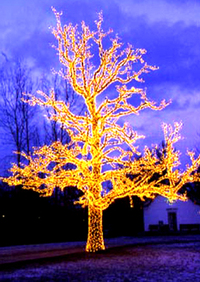 Tree_of_lights_sm